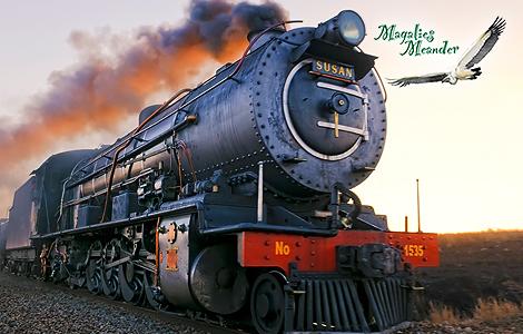 Stream Train to Magaliesburg!